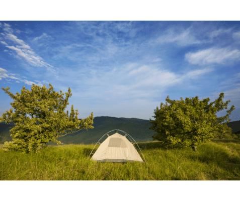 camping netherlands